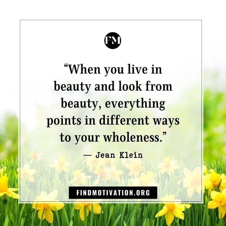 Best inspirational quotes about beauty helps you to see beauty in everything in this world